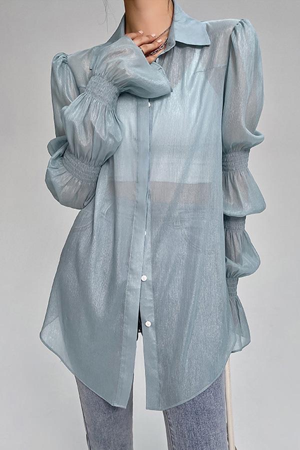 세크 시스루 프렌치 볼륨 슬리브 앤티크 쉬머 럭셔리 셔츠 (블루,화이트)